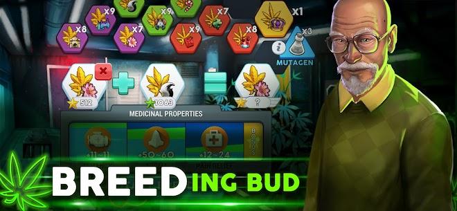 Hempire – Plant Growing Game MOD (Money/VIP) 4