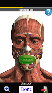 Anatomy Quiz Free 2.1 Download APK Mod 2