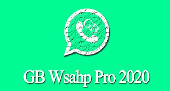 last version Pro Plus 2021 2