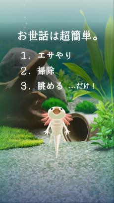 癒しのウーパールーパー育成ゲームのおすすめ画像2