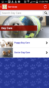 Capitol Canine Club 1.72.120.266 Mod APK Updated Android 3