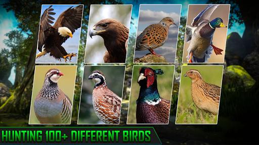 Hunting Games 2021 : Birds Shooting Games 2.4 screenshots 3