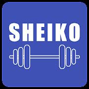 Sheiko Powerlifting Workout