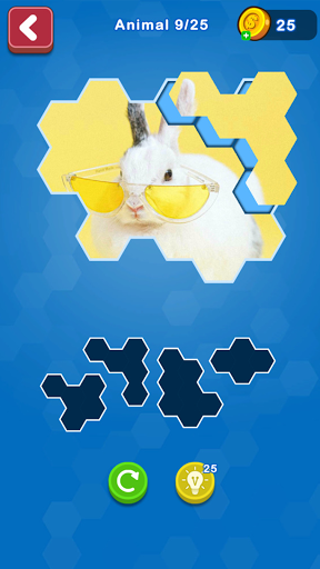 Hexa Puzzle Jigsaw: Anime Collection HD 1.11 screenshots 3