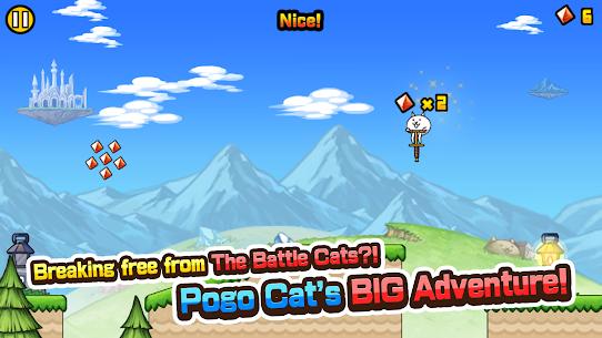 Go! Go! Pogo Cat 3