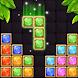 Block Puzzle Classic: Jewel Puzzle Game