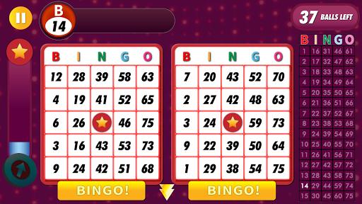 Bingo Classic Game - Offline Free 2.6 screenshots 4