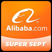 Alibaba.com - лидер в электронной торговле B2B