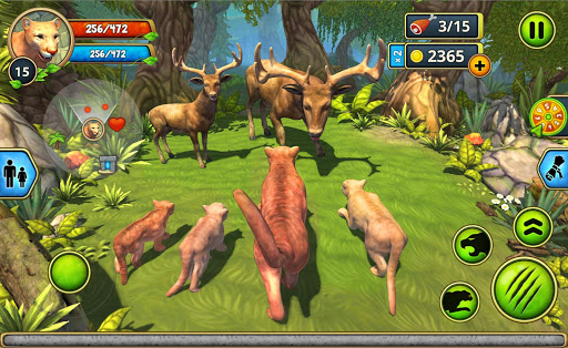 Mountain Lion Family Sim : Animal Simulator 1.8 screenshots 5
