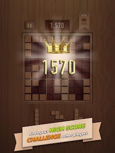 Woody 99 – Sudoku Block Puzzle – Free Mind Games 10