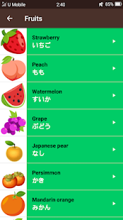 Learn Japanese Minna no Nihongo Screenshot