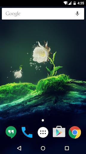 Cactus Flower Live Wallpaper 1.6.0 screenshots 1