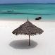 Zanzibar Travel Hotel Guide