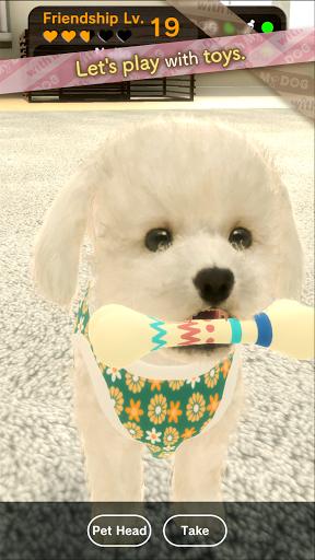 with My DOG  screenshots 6
