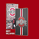 Ohio State Wallpapers Full HD - Backgrounds 4K Download on Windows