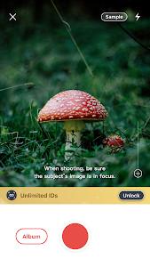Picture Mushroom - Mushroom ID 2.0