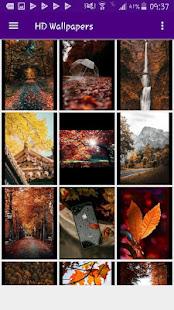 HD Wallpapers Offline