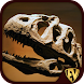 Palaeontology Dictionary - Fossil Discovery Guide - Androidアプリ