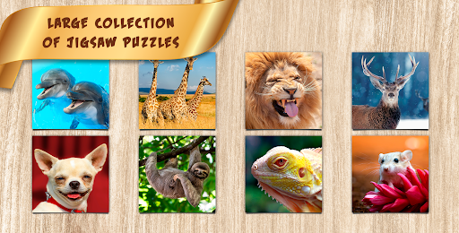 Puzzles for Adults no internet  screenshots 5