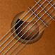 バーチャルギター - エレキ ギターそしてアコギ