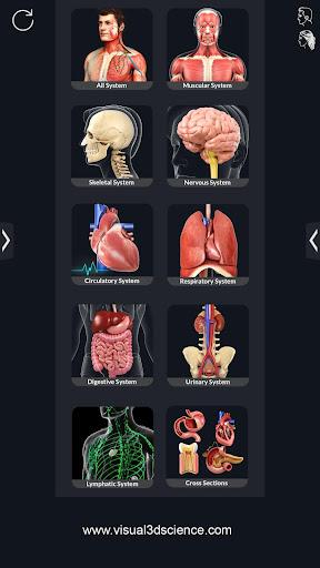 Human Anatomy  Paidproapk.com 1