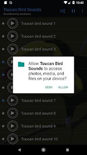 Toucan bird sounds ~ For Pc – Windows 10/8/7/mac -free Download 2