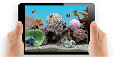 Marine Aquarium 3.3 PROのおすすめ画像4