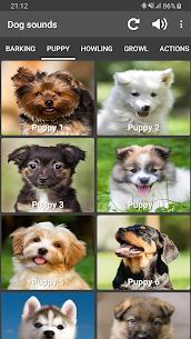 Dog Sounds 2