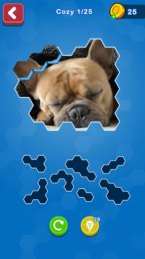 Hexa Puzzle Jigsaw: Anime Collection HD 1.11 screenshots 4
