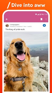 Reddit Premium v2021.12.0 MOD APK is Here ! [Latest] 5