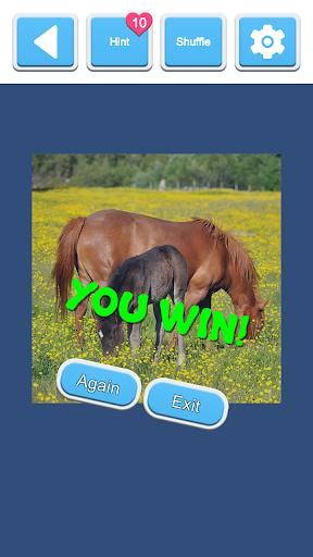 Jigsaw Horses 2.0 screenshots 5