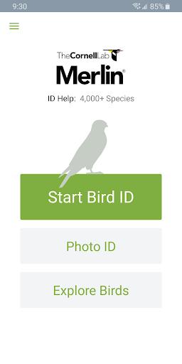Merlin Bird ID by Cornell Lab screenshot 1