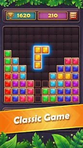 Block Puzzle Gem: Jewel Blast 2020 9