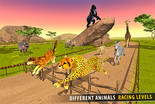 Savanna Animal Racing 3D: Wild Animal Games 1.0 screenshots 4