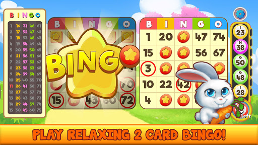 Bingo Pet Rescue  screenshots 2