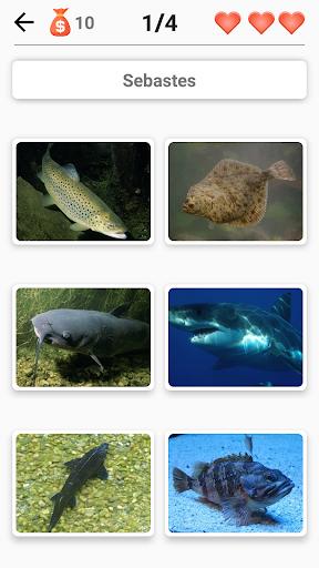 Animals -Quiz about Mammals, Birds, Fish!Zoo quiz.  screenshots 3
