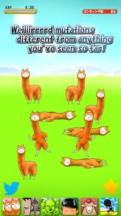 Alpaca Evolution Begins
