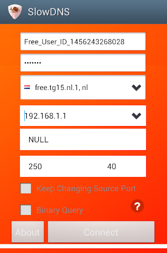 VPN Over DNS  Tunnel : SlowDNS 2.6.3 Screenshots 2