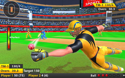 Indian Cricket League Game - T20 Cricket 2020 4 screenshots 8