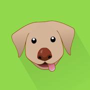 Dog Monitor: Puppy video cam