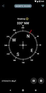 Digital Compass 2