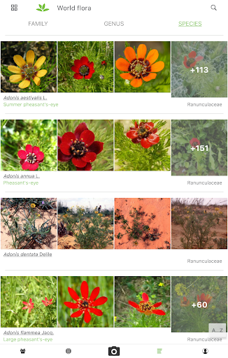 PlantNet Plant Identification 3.3.24 Screenshots 10