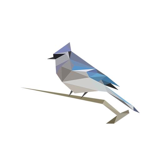 BirdNET: Identificación de sonidos de aves