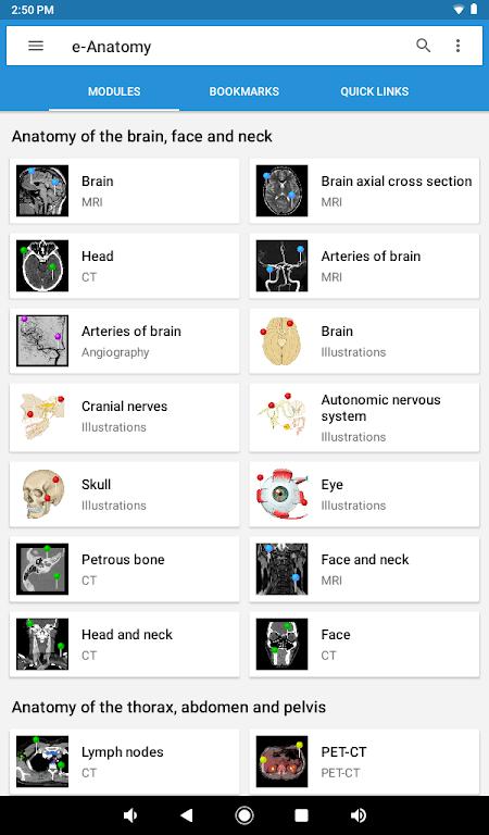 e-Anatomy  poster 15