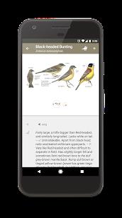 Collins Bird Guide 5