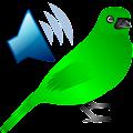 Birds Calls Sounds APK