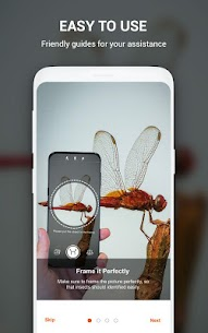Insect identifier App by Photo, Camera Mod Apk (Subscription Activated) 10