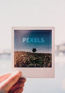 Pexels 8