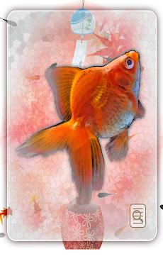 金魚すくい(お祭)のおすすめ画像4
