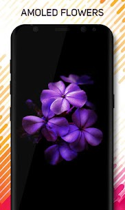 Amoled Pro Wallpapers Apk Download 7